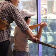 初めてのすみだ水族館♪